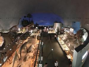 恐竜博物館内部.jpg